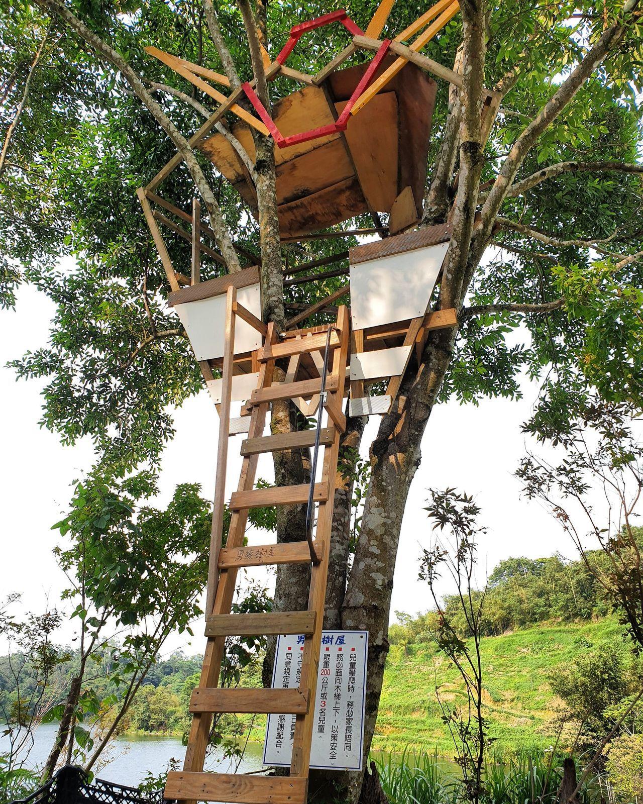 「白匏湖有機農場」除了提供簡餐和烤肉服務外,也建造簡易的樹屋讓孩童攀爬。記者胡瑞...