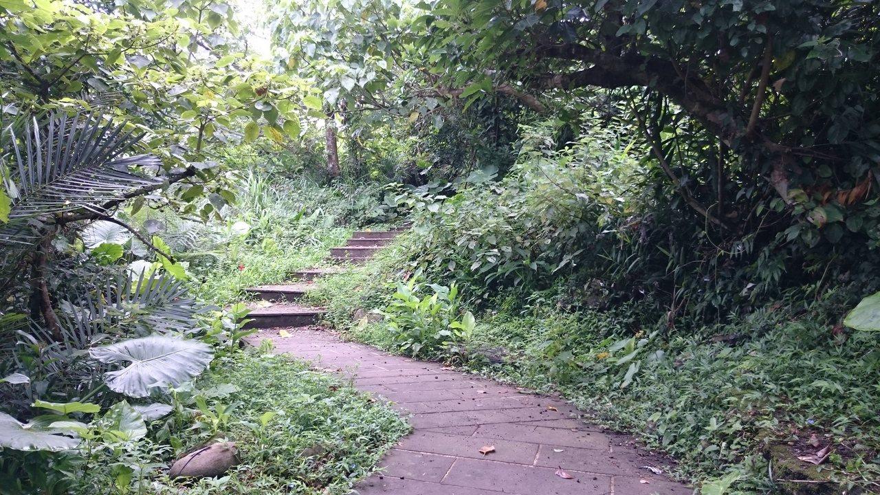 龜山島生態步道。圖/東北角暨宜蘭海岸國家風景區管理處提供