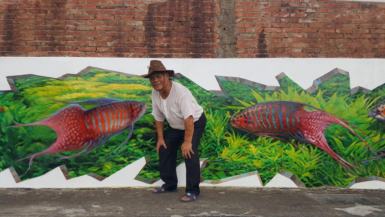 苗栗縣銅鑼鄉致力復育本土蓋斑鬥魚,最近在社區牆面完成3D版的彩繪鬥魚,圖案鮮活,...