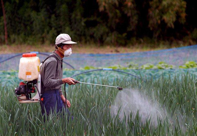 日本勞動力短缺,促使政府決定開放外籍勞工。圖/歐新社