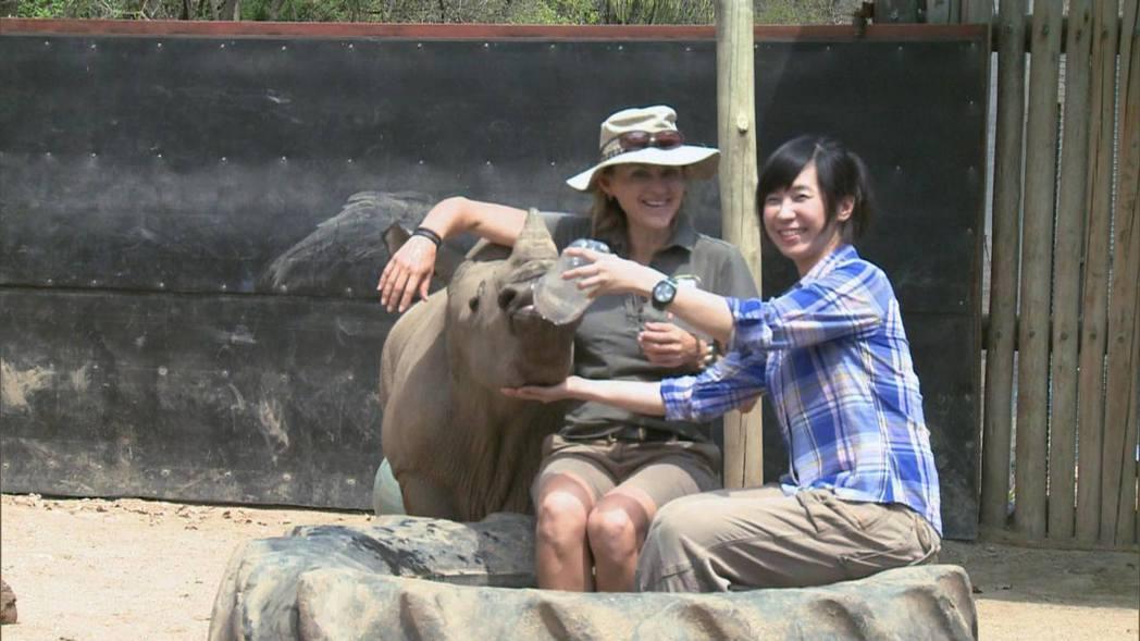 小犀牛撞了她一下,她從此背負了責任。圖/白心儀提供