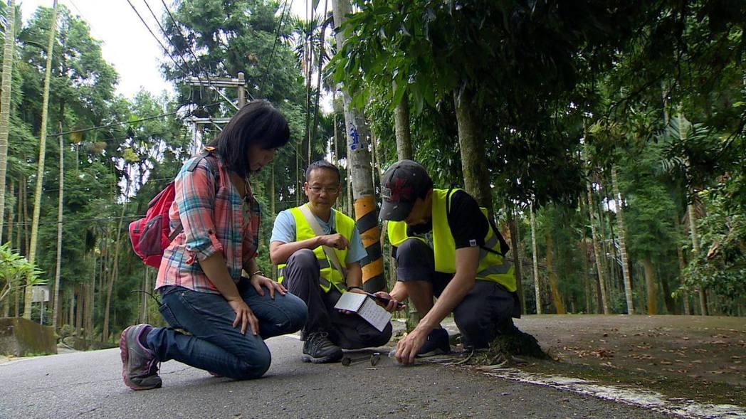 在台灣拍攝石虎、黑熊,過程並不輕鬆。圖/白心儀提供