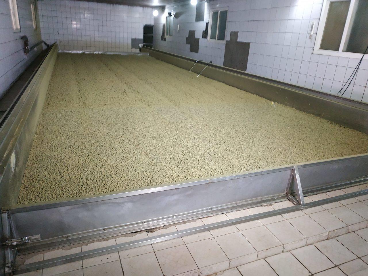 高慶泉工廠,此為黑豆發酵過後。記者何秀玲/攝影