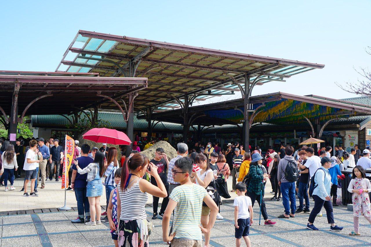 今年8月30日前,台東各景點遊客人潮如織,但9月1日起,加上陸客不來,人潮也跟著...