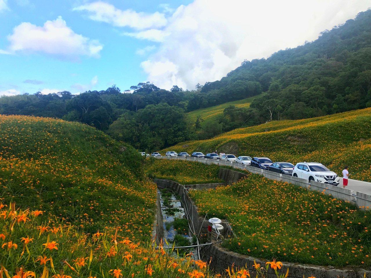 花蓮玉里赤科山上遊人如織,許多遊客只能路邊停車拍照。記者王思慧/攝影