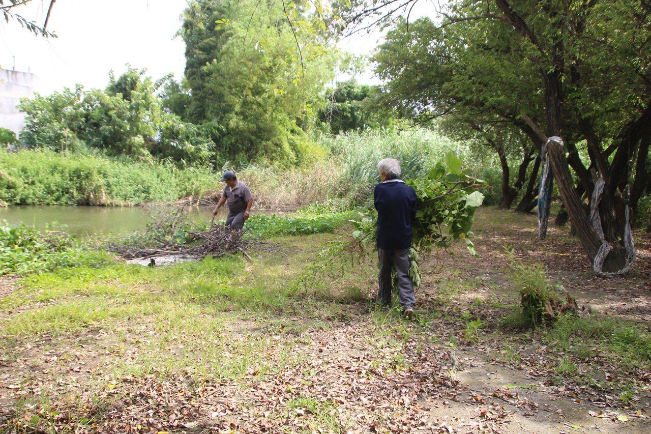 華崙濕地公園近年維護良好,常有居民和外地民眾前來。記者林敬家/攝影