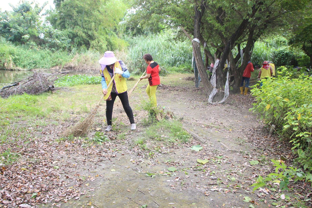 華崙社區志工今天到濕地公園整理環境。記者林敬家/攝影