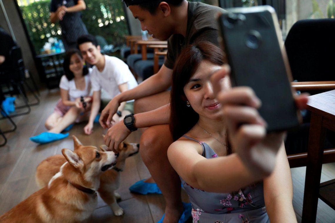除了老虎以外,近年在泰國及其他東南亞國家,也吹起各種動物咖啡廳的風潮。但這類人為...