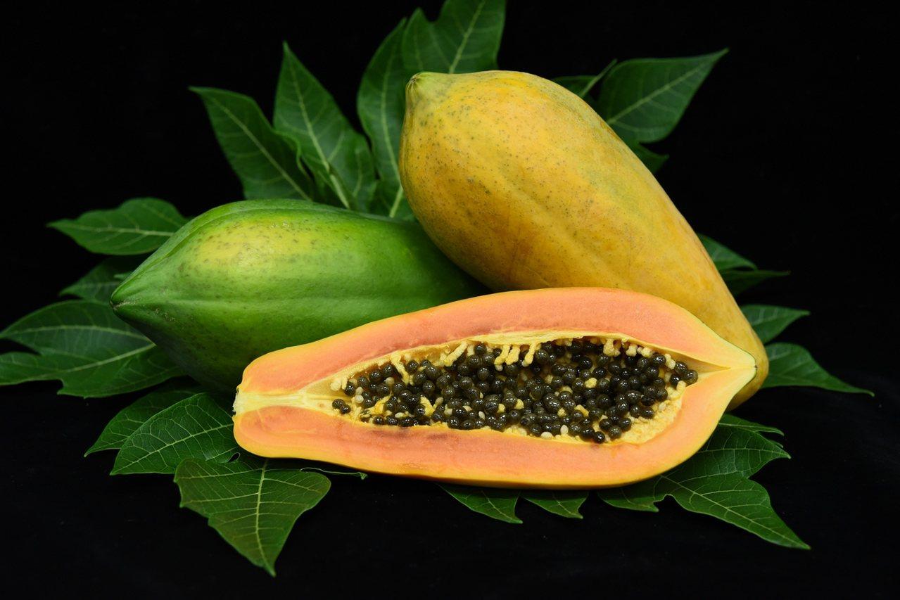 「萬壽果」營養超豐富,今年量多質佳,台南農改場呼籲民眾多吃。圖/台南農改場提供