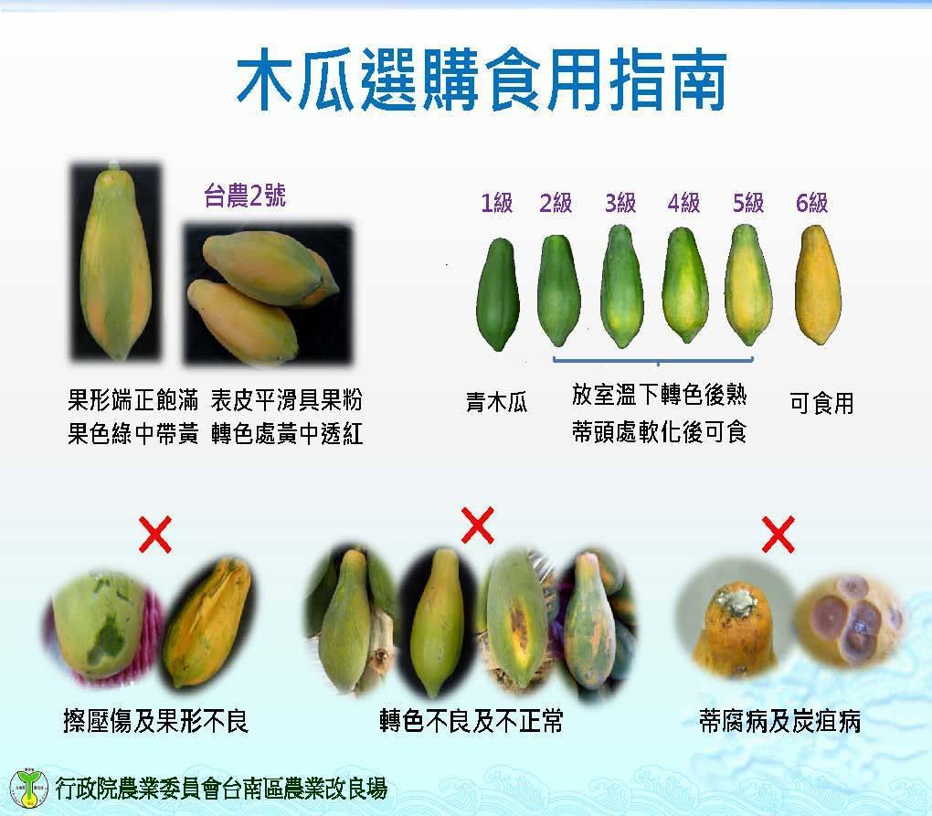 台南農改場提供挑選方法。圖/台南農改場提供