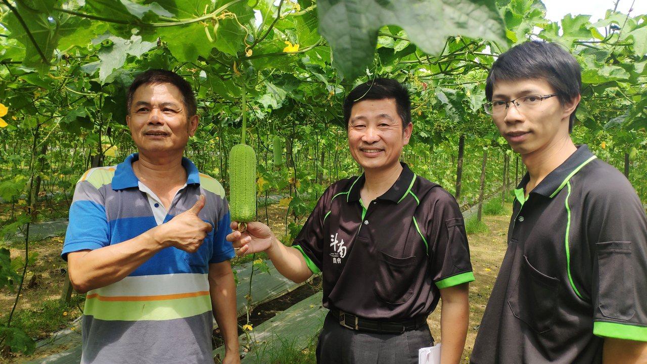 為解決蜜蜂數量驟減,斗南鎮農今年與古坑蜜蜂故事館合作「田間放蜂計畫」,蜜蜂故事館...