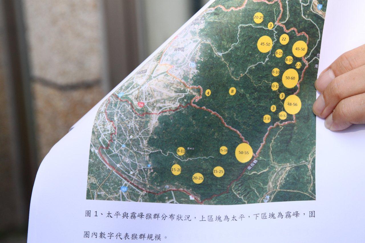 台中市太平的黃竹坑山區台灣獼猴出沒頻繁,嚴重影響農作,圖為目前台中台灣獼猴的分佈...
