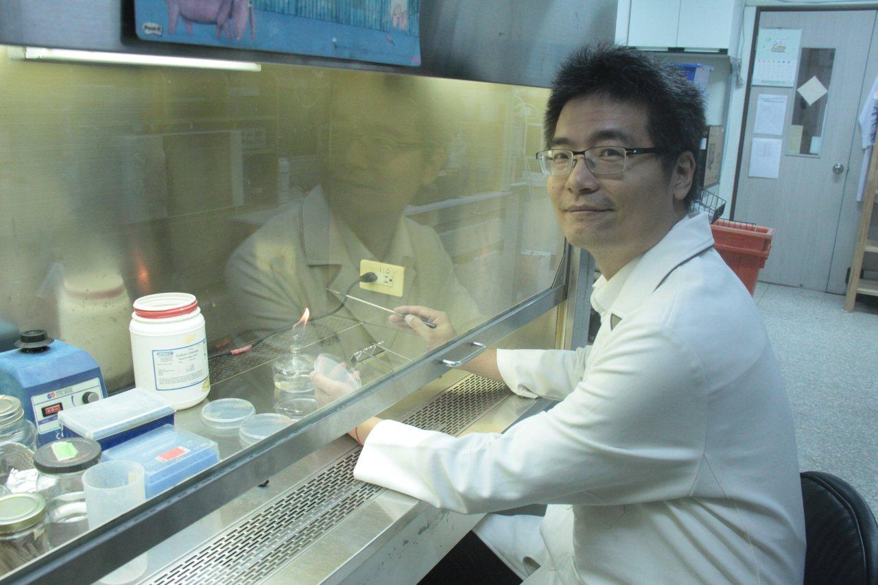 慈濟大學生命科學系助理教授陳俊堯喜愛研究細菌,更因此出版介紹細菌功能。圖/慈濟大...
