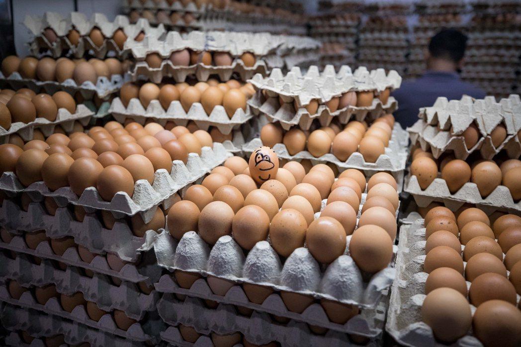 澳洲1歲兒童有9%對雞蛋過敏。(歐新社)