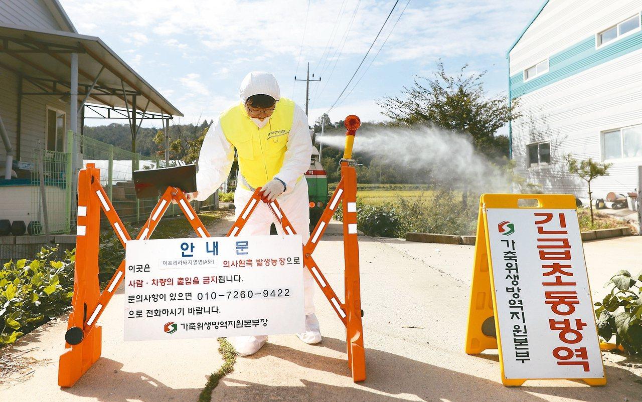 南韓坡州市爆發首例非洲豬瘟,南韓於17日上午進行為期48小時封鎖。圖為南韓檢疫人...
