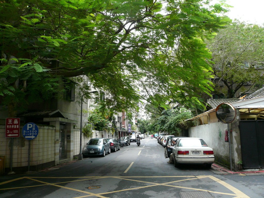青田街。聯合報系資料照片/記者游智文攝影