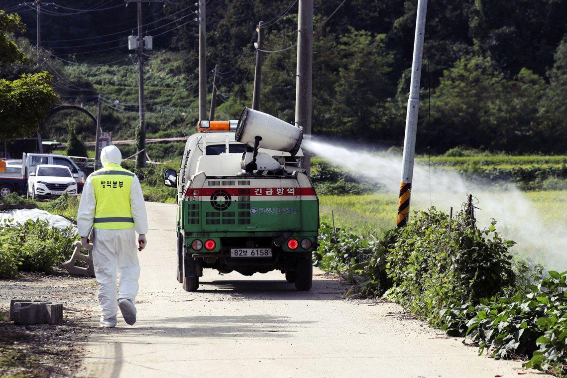 南韓全國各地的豬舍、屠宰場、豬肉加工廠,也將從17日清晨6點30分起完全停工、全...