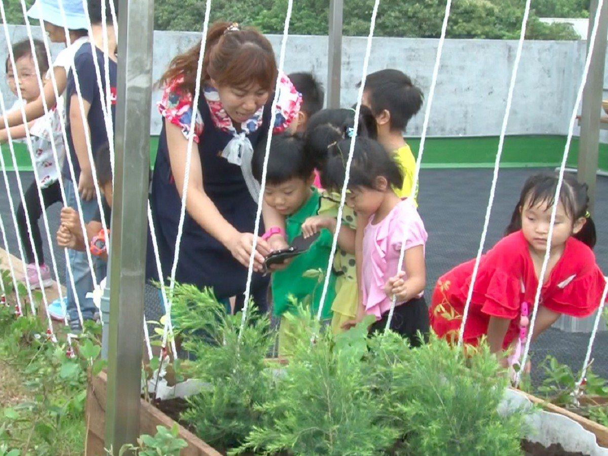 新北市立萬里幼兒園近來活化頂樓的閒置空間打造一處新的農場,小朋友們種下屬於自己班...