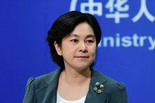 中共外交部發言人華春瑩。(外交部網站)