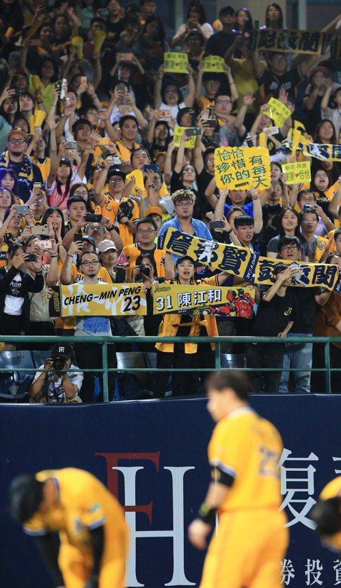 中信兄弟象彭政閔在新莊棒球場球賽結束後,向觀眾們鞠躬致意,觀眾回以滿場的的掌聲。...