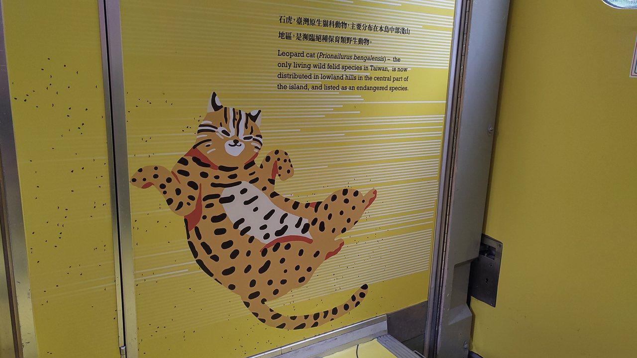 車廂一角,台版石虎圖案。記者董俞佳/攝影