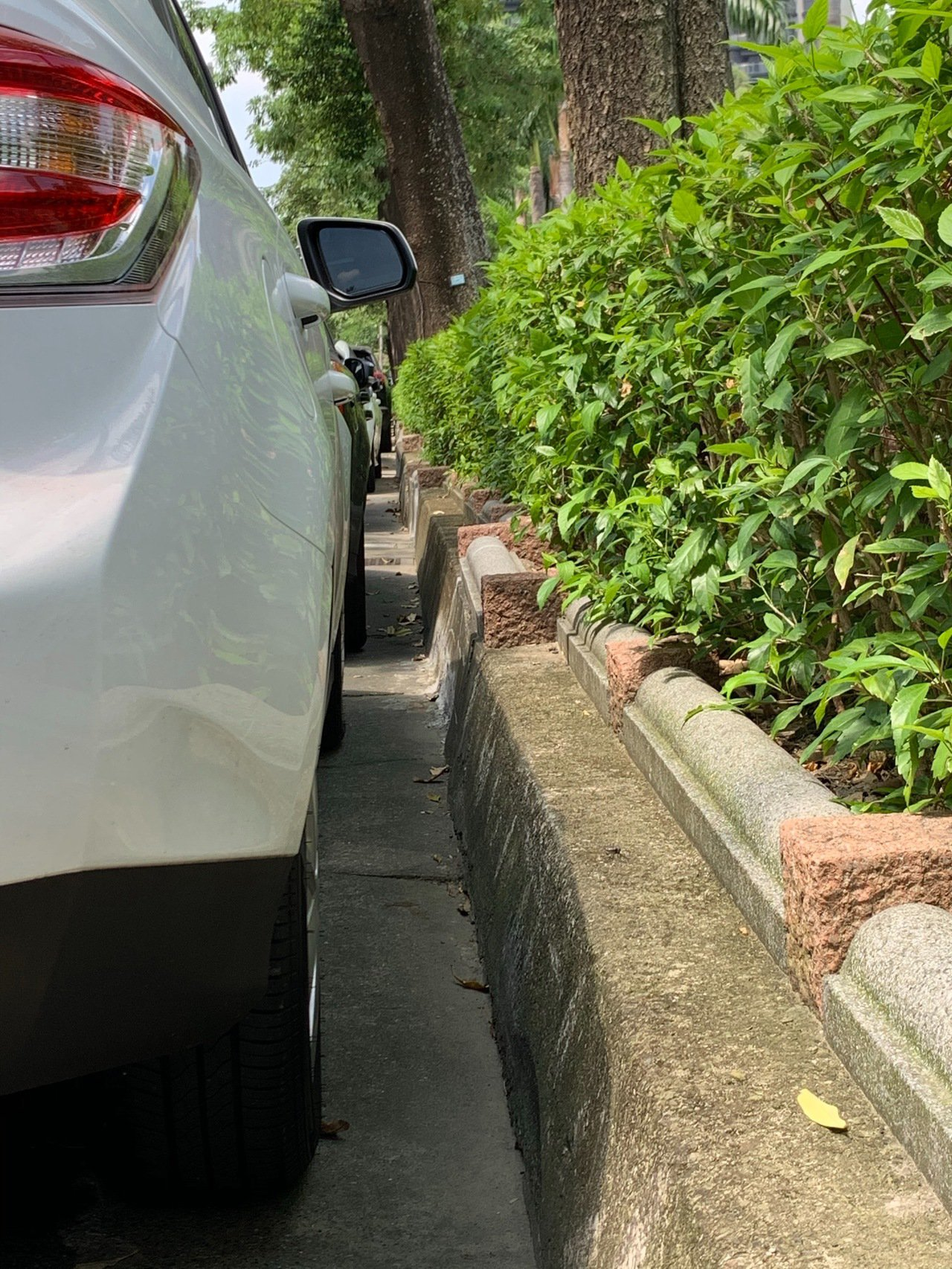 台中市文心森林公園鄰大墩七街路邊停車格,施作路平專案後,因塗銷快慢車道分隔線,路...