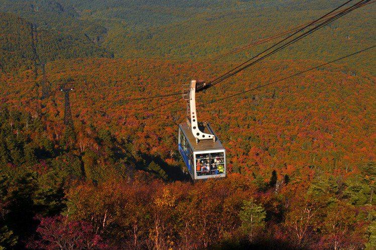 透過八甲田纜車,可以居高臨下欣賞紅葉美景。圖/JR東日本提供