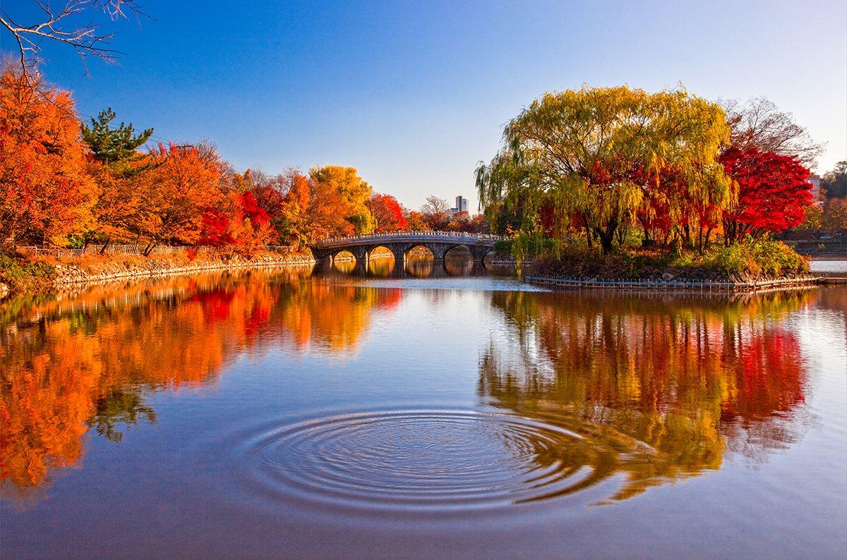 大邱頭流公園的聖堂池。圖/大邱駐台觀光推廣辦事處提供