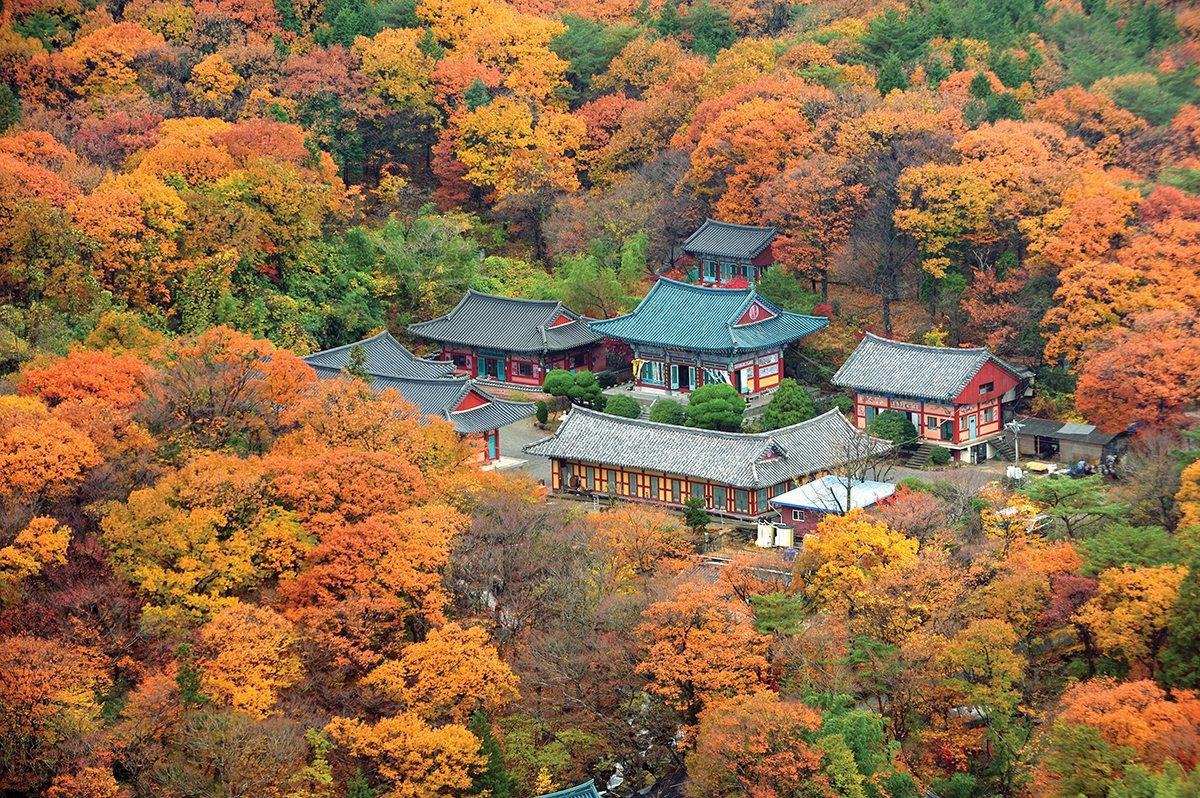 釜山梵魚寺 。圖/韓國觀光公社提供