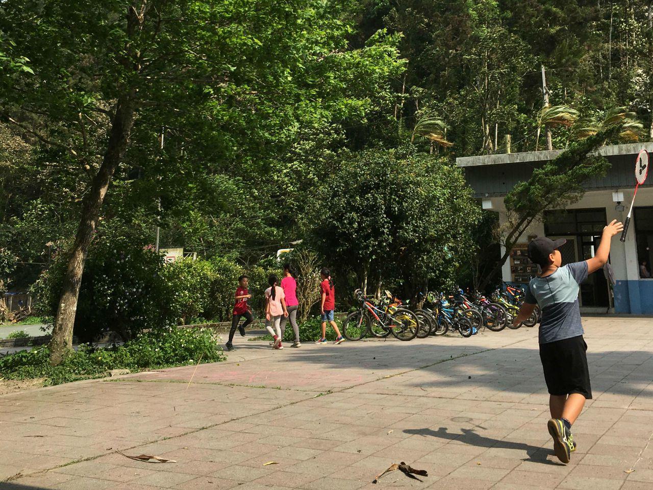 學校四處都是樹和山,綠意相映。圖/卓同學提供