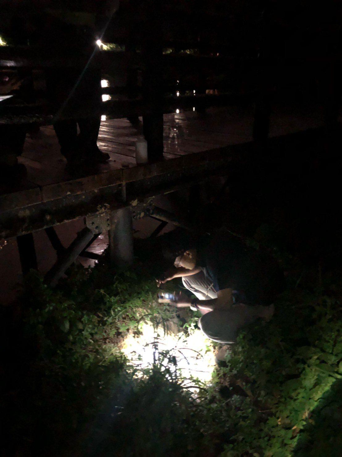 民眾日前發現金龍湖遭到汙染,經議員白珮茹通報環保局後,稽查人員當天晚上連夜採樣。...