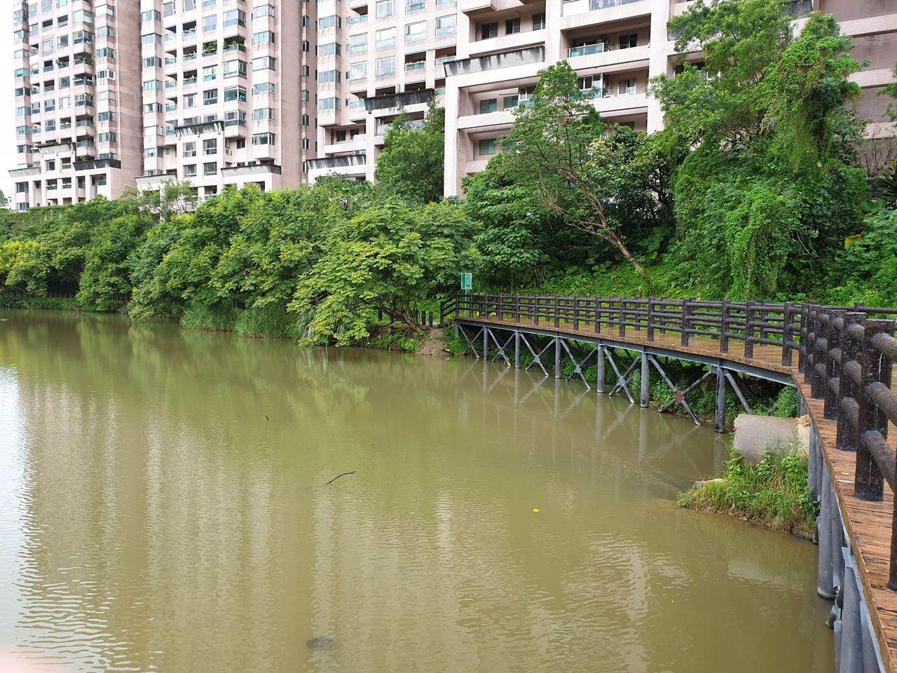汐止水蓮山莊因汙水管線破損導致廢棄汙水流入金龍湖,造成環境惡臭、湖水遭到汙染。記...