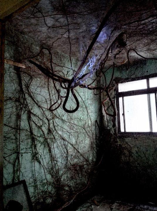 位在新店的老舊公寓,場景就像電影《倩女幽魂》的蘭若寺,也因此獲得攝影展第一名。圖...