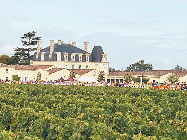 「紅酒馬」大批人群跑過波爾多各酒莊與葡萄園的景致很吸睛。 圖/陳志光、游慧君