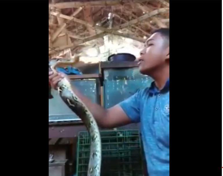 男子不畏懼蛇不停挑釁。圖片來源/臉書