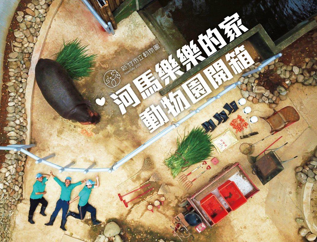 新竹市長林智堅在臉書PO出「河馬樂樂的家 動物園開箱文」,為民眾介紹年底將重新開...