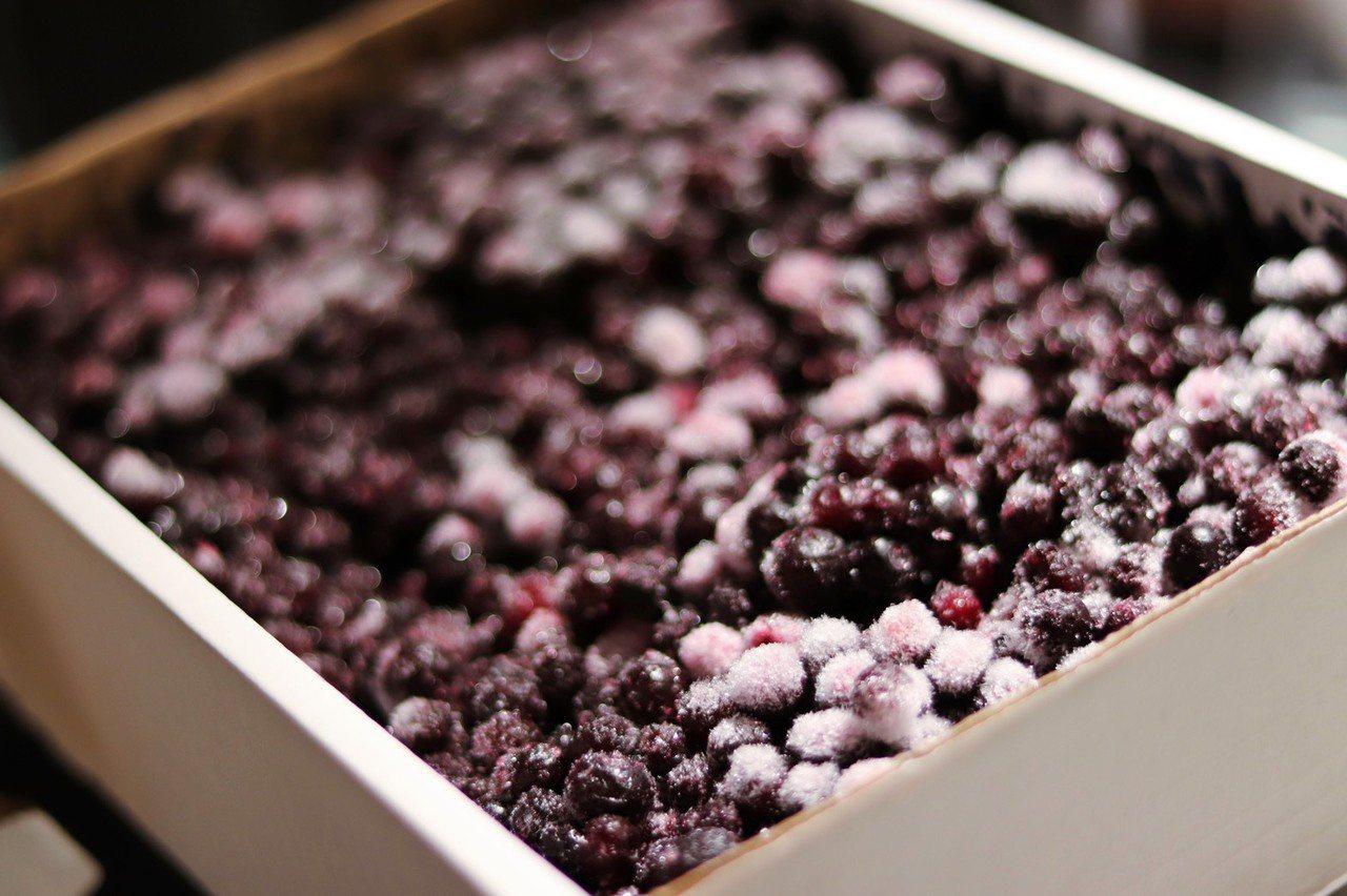 現代人最愛抗氧化聖品「野生藍莓」,含有豐富花青素。記者徐力剛/攝影