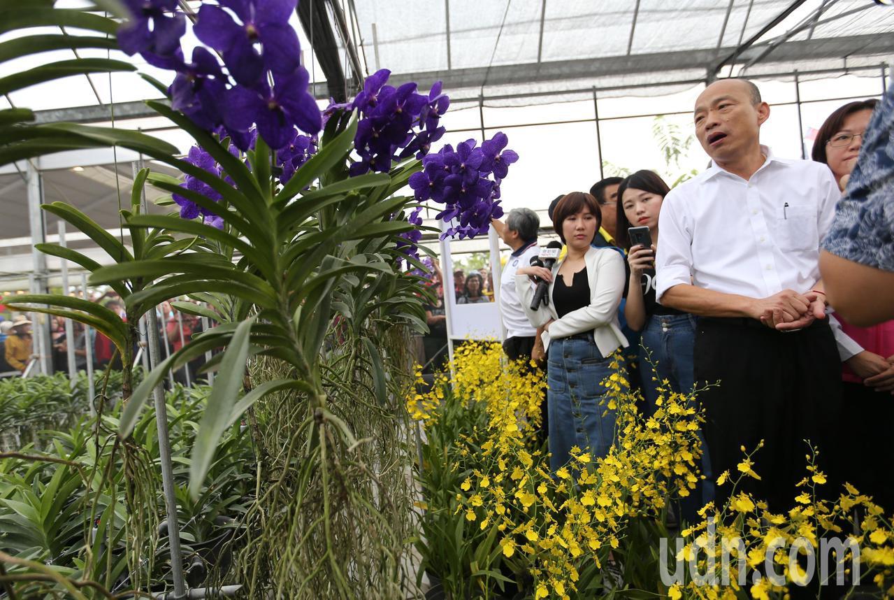 國民黨總統參選人韓國瑜參訪屏東蘭花產業,大批韓粉跟隨。記者劉學聖/攝影