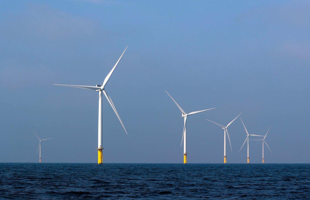荷蘭阿姆斯特丹近海的風力發電機組。川普不喜歡風力發電,熱愛化石燃料。(路透)
