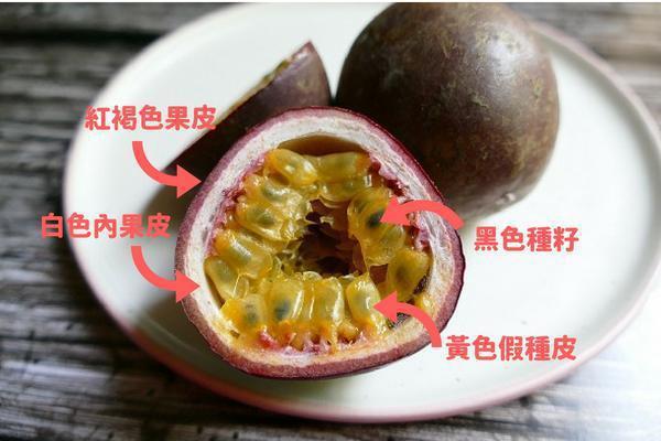 百香果果肉,其實是假種皮與種籽喔。 圖/台灣好食材提供,來源pixabay.co...