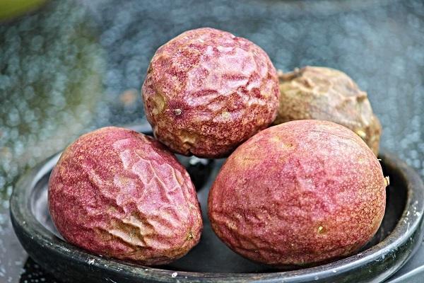 百香果放在通風陰涼處,待2~4天果皮微皺、蒂頭乾枯就可享用。 圖/台灣好食材提供...