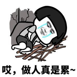 圖片來源/新浪網