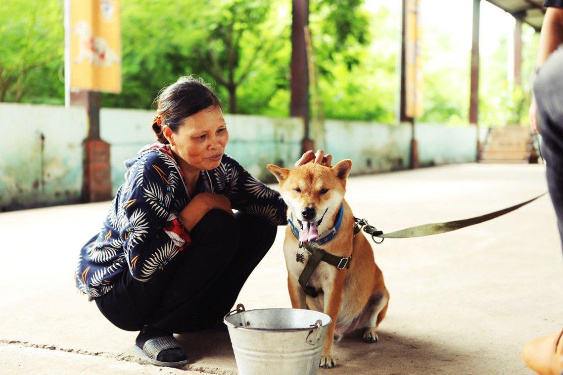 「這將會是一部描述人狗之間深刻情誼的電影,敬請期待!」 圖/CẬU VÀNG M...