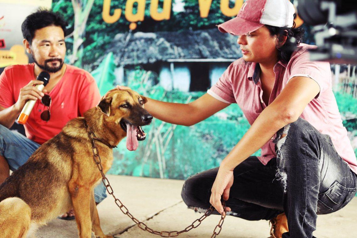 在越南社會大眾的既定印象中,陪伴老Hac的小黃應該是越南的土狗,但是製作團隊在今...