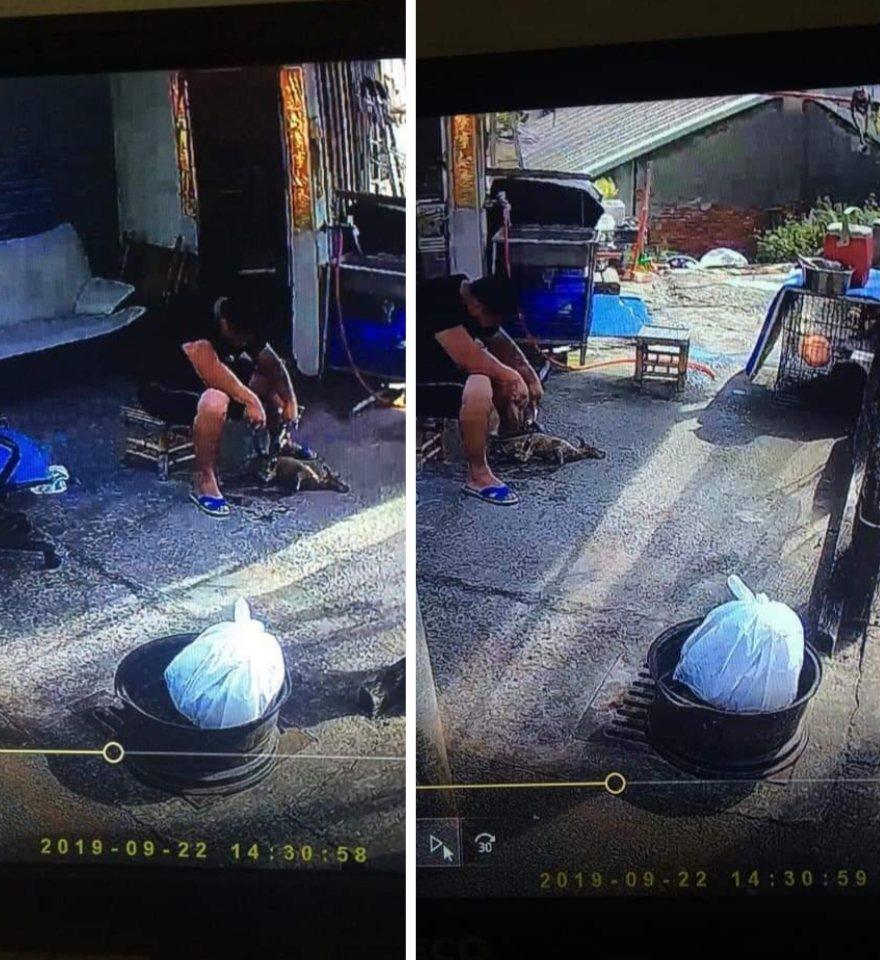 台中市梧棲區有網友說看到有人烤狗肉吃。圖/取自臉書沙鹿之美