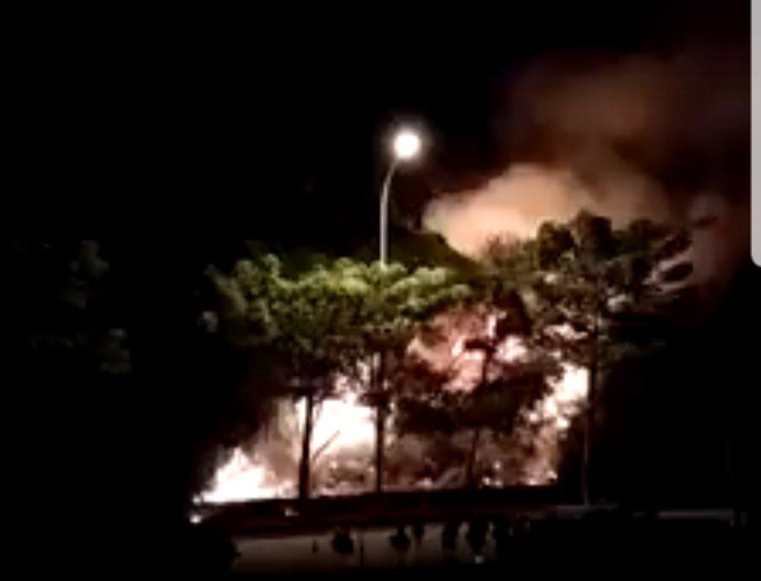 台中市中清路旁,昨晚發生野草大火。圖/取自臉書
