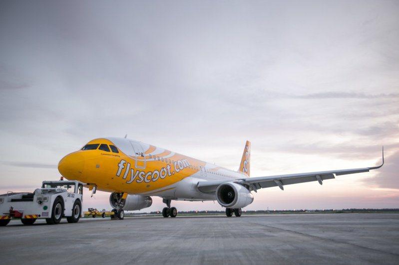 酷航宣布即日起全球同步取消每段240元的官網交易手續費。圖/酷航提供