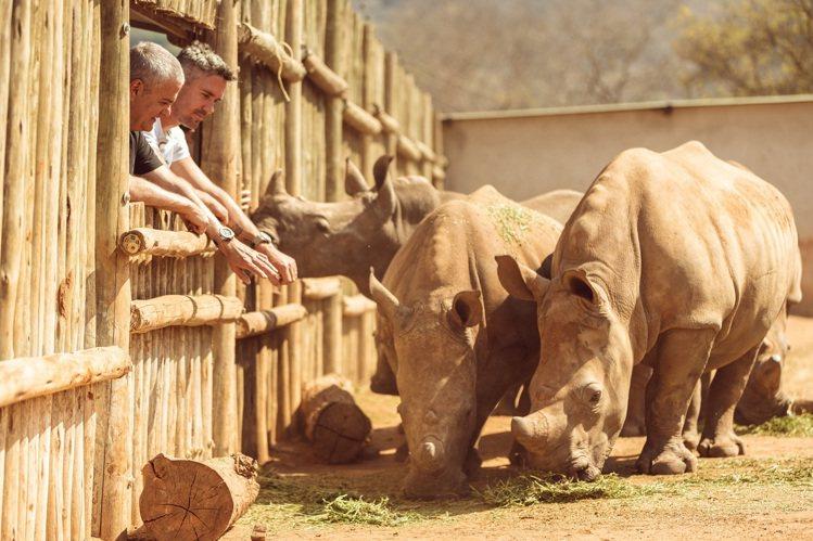世界上僅剩約28,000頭犀牛,即有可能在這個世紀末之前,就因為人類的貪婪而滅絕...