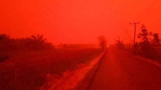 印尼近來森林大火造成嚴重霾害,蘇門答臘島占碑省驚見血紅色天空。(圖取自網路)