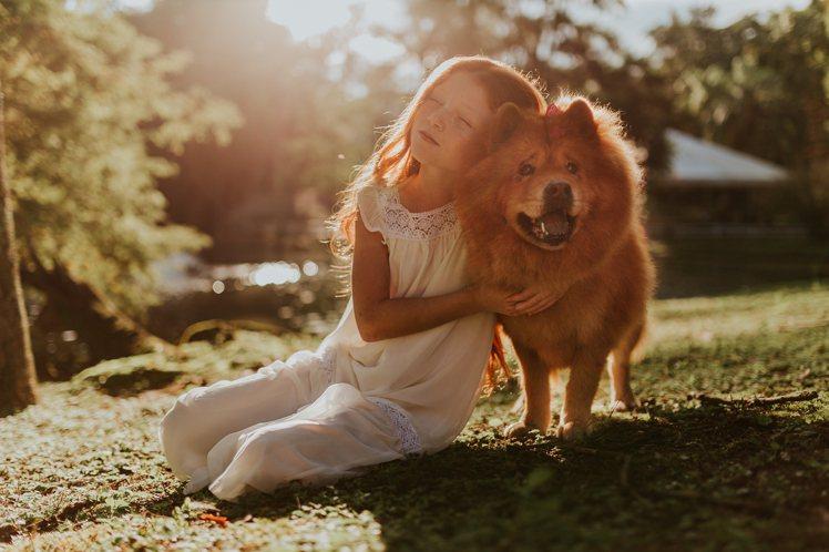 每個狗奴,都希望狗狗能變成人。圖/摘自Pelexs
